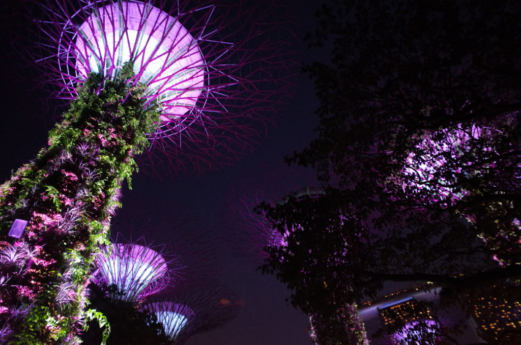 ひとり旅で訪れたシンガポールの写真