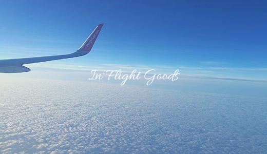 【飛行機で使える】おすすめトラベルグッズ10選【退屈を吹き飛ばせ】