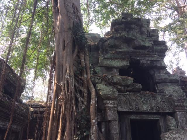 カンボジアのオプショナルツアーで見たタプローム遺跡の写真