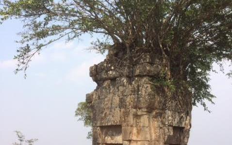 プリアヴィヒア遺跡をツアー観光*行き方と感想まとめ【カンボジア旅行記】