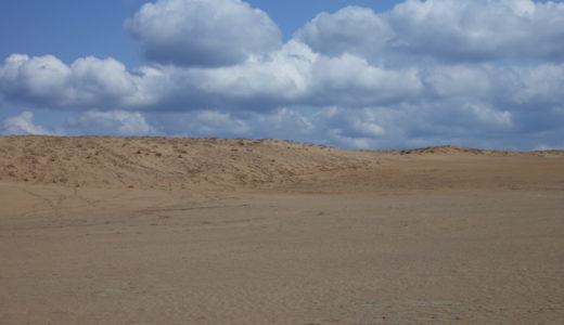 大阪から日帰りバス旅行!念願の鳥取砂丘を見てきた感想