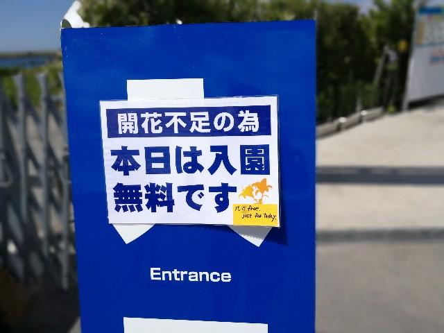 バイクで訪れた大阪舞洲ゆり園の写真