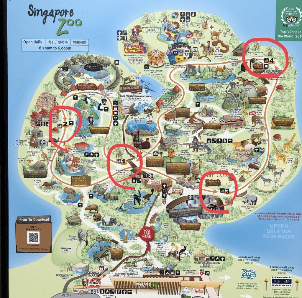 シンガポール動物園のトラム乗り場