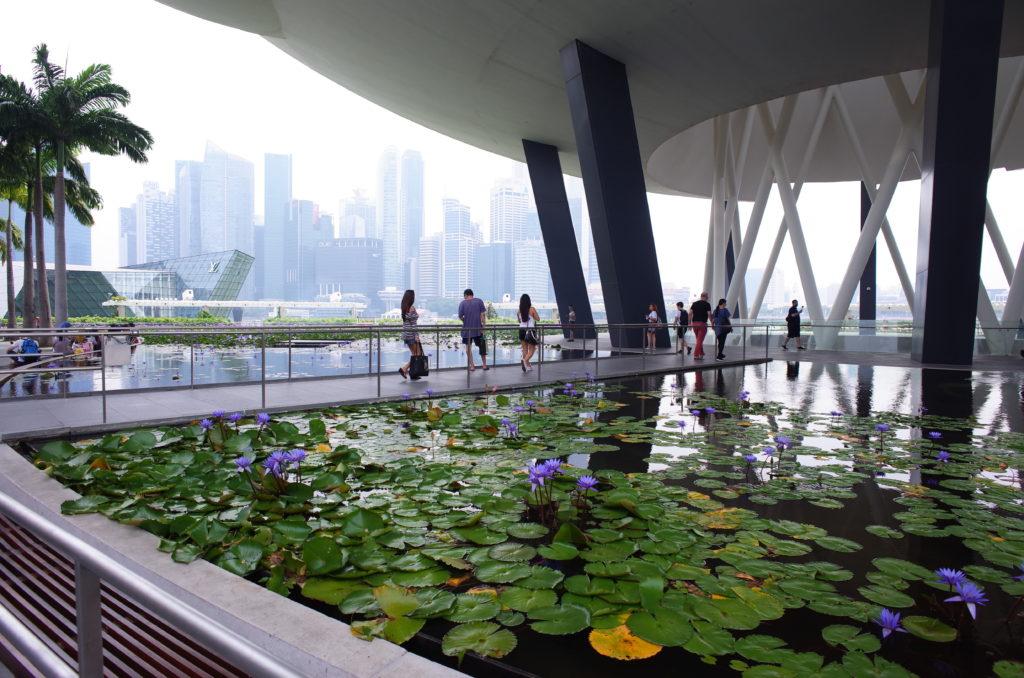 シンガポール一人旅で撮影した写真