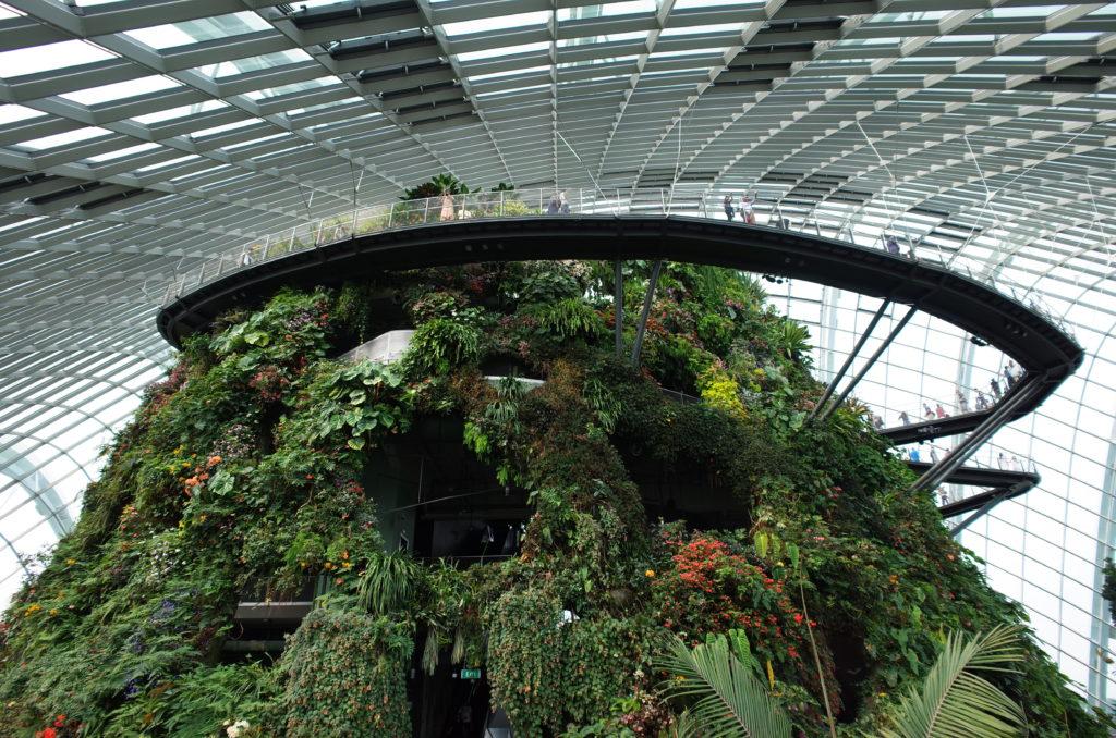 シンガポールひとり旅で訪れたクラウドフォレストの写真