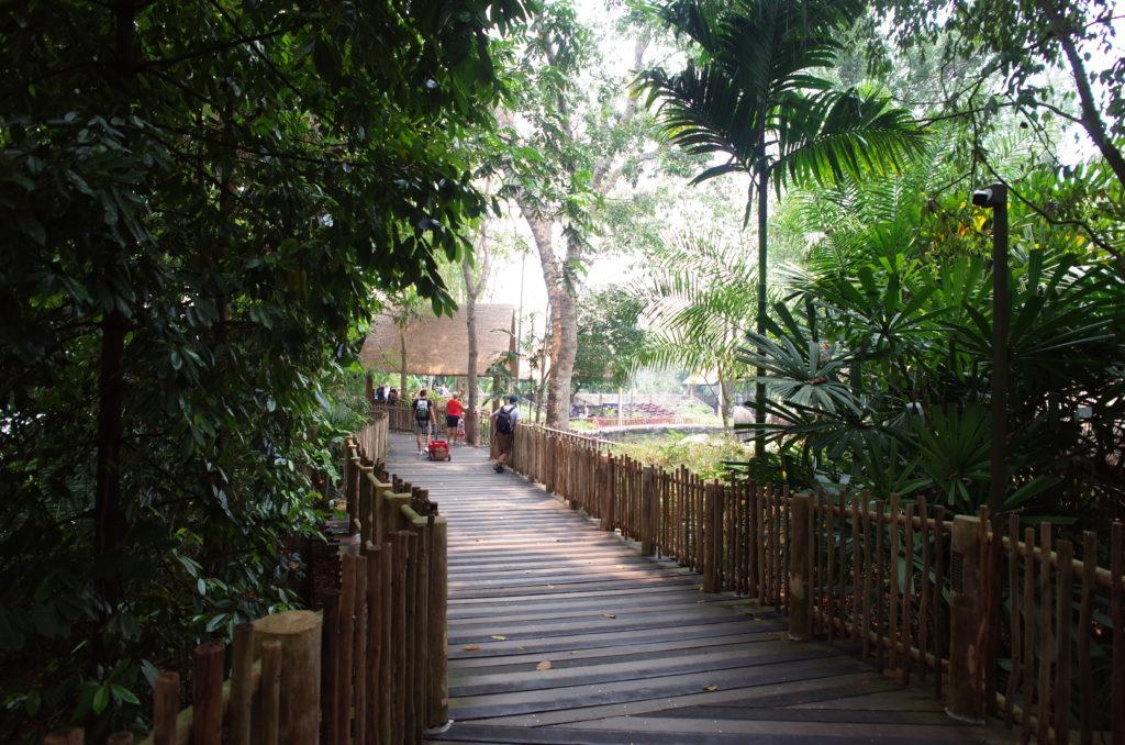 女ひとり旅で訪れたシンガポール動物園の写真