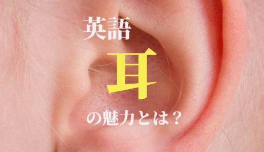 独学でもOK!英語の発音本で1番おすすめな「英語耳」の魅力【レビュー】